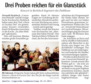 2012-12-24-landeszeitung